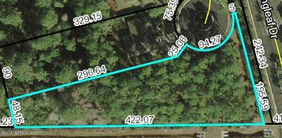 St Augustine Residential Lots & Land For Sale: 137 Needle Palm Dr