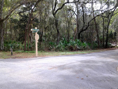 St Augustine Residential Lots & Land For Sale: 701 Camelia Trl