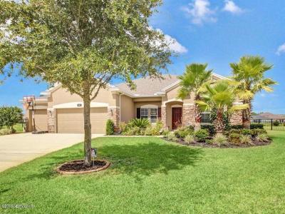 Jacksonville Single Family Home For Sale: 163 Wild Plum Ct