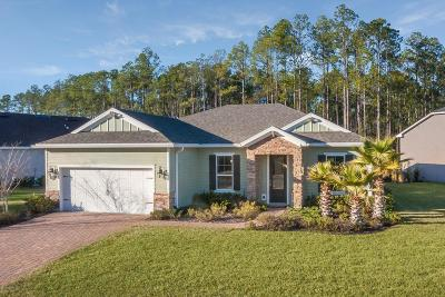 Nocatee, Nocatee Single Family Home For Sale: 469 Aspen Leaf Dr