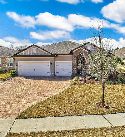 Nocatee, Nocatee Single Family Home For Sale: 96 Stony Ford Dr