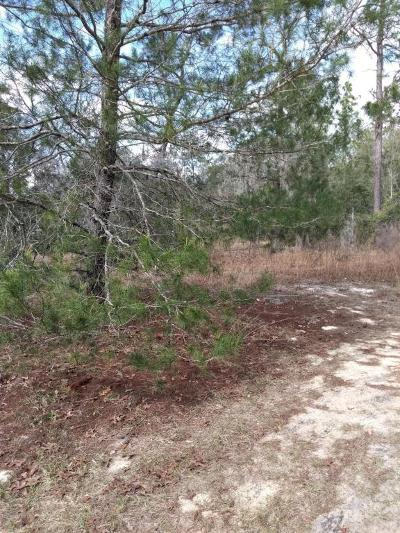 Residential Lots & Land For Sale: 7685 Colorado Ave