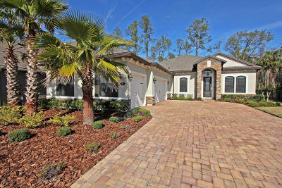 Nocatee Single Family Home For Sale: 95 Stony Ford Dr