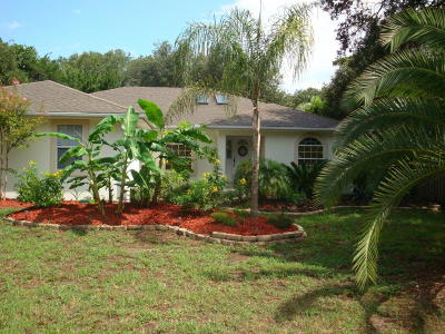 St Augustine Single Family Home For Sale: 411 5th St