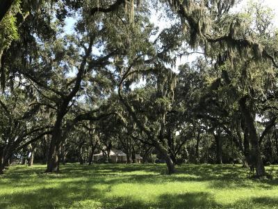 Fleming Island Residential Lots & Land For Sale: 140 Cedar Run Dr