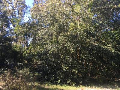 Orange Park Residential Lots & Land For Sale: Polk Ave