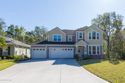 Austin Park, Coastal Oaks, Coastal Oaks At Nocatee, Del Webb Ponte Vedra, Greenleaf Preserve, Greenleaf Village, Kelly Pointe, Nocatee Single Family Home For Sale: 243 Stony Ford Dr
