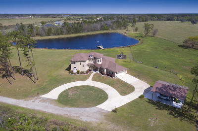 Green Cove Springs Single Family Home For Sale: 3120 Feed Mill Rd