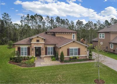Coastal Oaks At Nocatee Single Family Home For Sale: 58 Perico Bay Ct