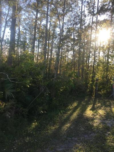 Jacksonville Residential Lots & Land For Sale: Otway Rd
