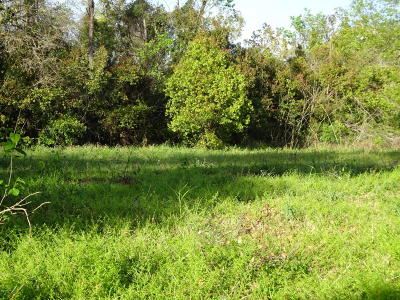 Jacksonville Residential Lots & Land For Sale: 7231 Smyrna St