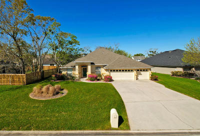 Duval County Single Family Home For Sale: 2338 Osprey Lake Dr