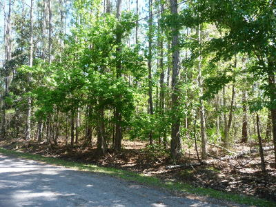 Residential Lots & Land For Sale: Old Spanish Bluff Trl