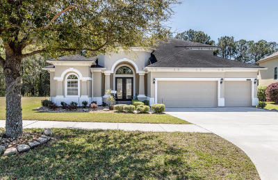 Green Cove Springs Single Family Home For Sale: 2896 Woodbridge Crossing Ct