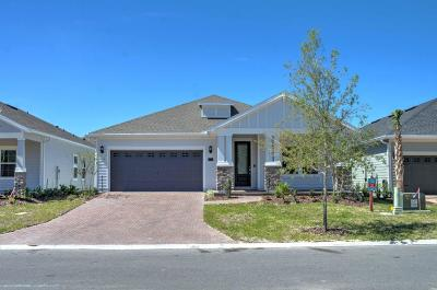 St Augustine Single Family Home For Sale: 290 Rivercliff Trl
