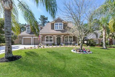 32003 Single Family Home For Sale: 2449 Stoney Glen Dr