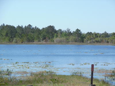 Residential Lots & Land For Sale: 7982 Fl-100