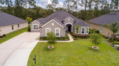 Green Cove Springs Single Family Home For Sale: 3553 Oglebay Dr