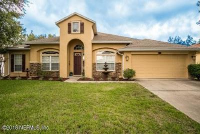 Orange Park Single Family Home For Sale: 657 Wakeview Dr