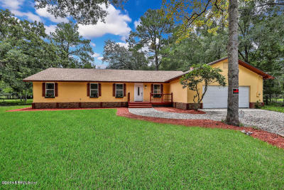 Clay County Single Family Home For Sale: 747 Tara Farms Dr