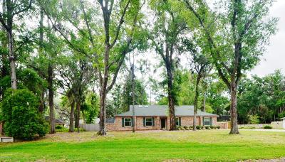 Fleming Island Single Family Home For Sale: 242 Oak Dr S