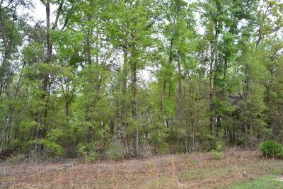 Residential Lots & Land For Sale: 6287 Vanderbilt Dr