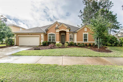 Orange Park Single Family Home For Sale: 4431 Vista Point Ln