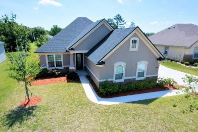 Green Cove Springs Single Family Home For Sale: 3567 Oglebay Dr