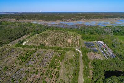 Jacksonville Residential Lots & Land For Sale: 12602 Sawpit Rd