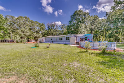 32043 Single Family Home For Sale: 3079 County Road 209a