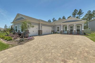 Palencia Single Family Home For Sale: 2734 Las Calinas Blvd