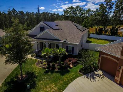 Yellow Bluff Landing Single Family Home For Sale: 15934 Bradford Lake Ct