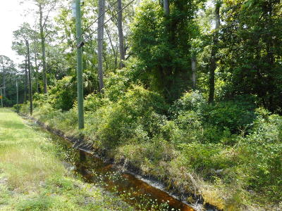 St. Johns County Residential Lots & Land For Sale: 214 County Road 214