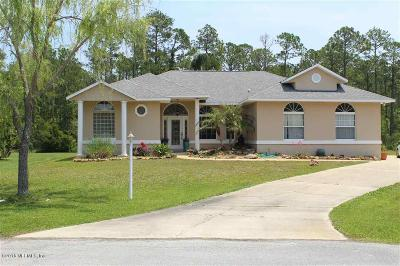 St Augustine Single Family Home For Sale: 250 Michael Dr