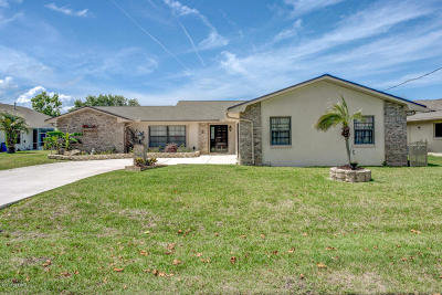 Flagler County Single Family Home For Sale: 5 Cheyenne Ct