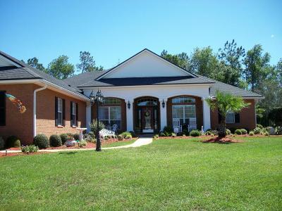 Jacksonville Single Family Home For Sale: 1025 Morning Stroll Ln