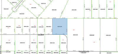 Residential Lots & Land For Sale: 120 Mc Call St