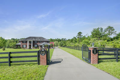 Bartram Downs Single Family Home For Sale: 243 Towers Ranch Dr