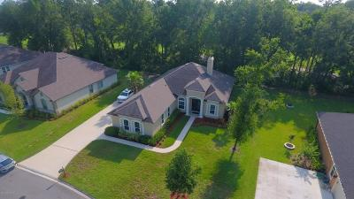 Green Cove Springs Single Family Home For Sale: 3676 Oglebay Dr
