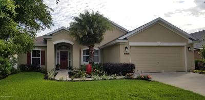 Orange Park, Fleming Island Single Family Home For Sale: 1464 Canopy Oaks Dr