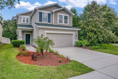 Ponte Vedra Single Family Home For Sale: 22 Howland Dr
