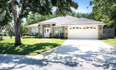 Jacksonville Single Family Home For Sale: 3695 Eagle Ridge Dr