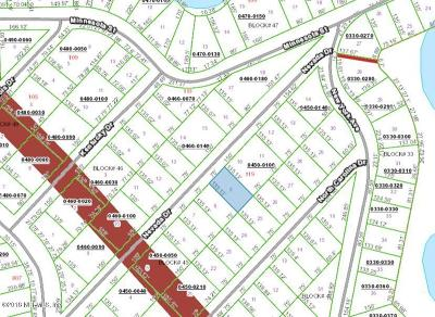 Residential Lots & Land For Sale: 117 Nevada Dr