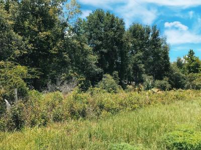 Residential Lots & Land For Sale: 217 Putnam Ave