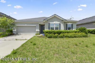 Clay County Single Family Home For Sale: 1066 Wetland Ridge Cir