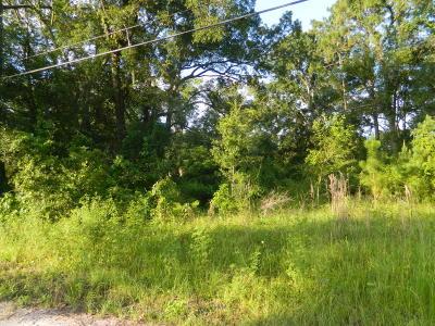 Residential Lots & Land For Sale: 115 Putnam Ave