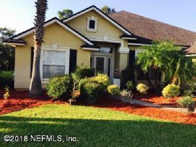 Orange Park Single Family Home For Sale: 1734 Eagle Watch Dr