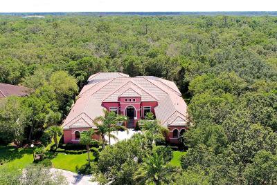 Palm Coast Single Family Home For Sale: 6 Spanish Oaks Ct