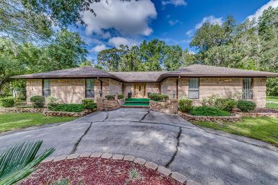 Middleburg Single Family Home For Sale: 4141 Honeysuckle Cir
