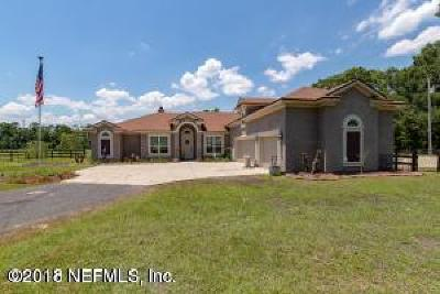 Green Cove Springs Single Family Home For Sale: 2020 County Road 209b